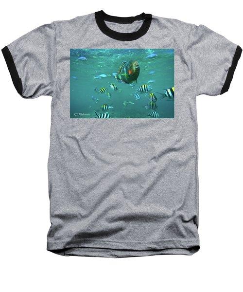 Parrot Fish Baseball T-Shirt by Tim Fitzharris