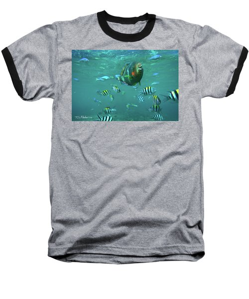 Parrot Fish Baseball T-Shirt