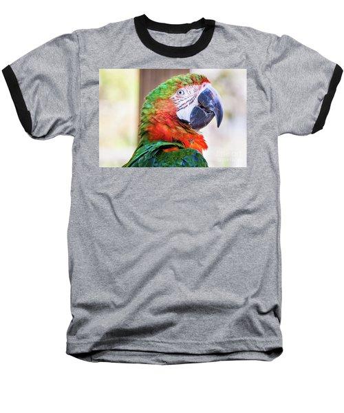 Parrot Baseball T-Shirt