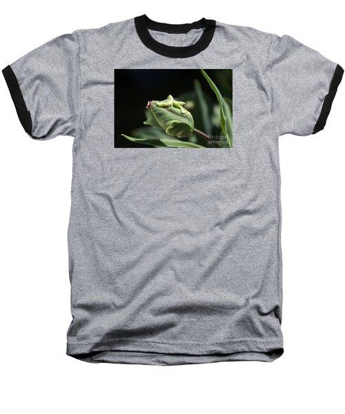 Parrot Tulip Bud Baseball T-Shirt