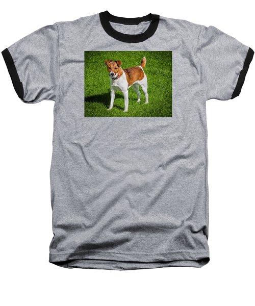 Parson Jack Russell Baseball T-Shirt
