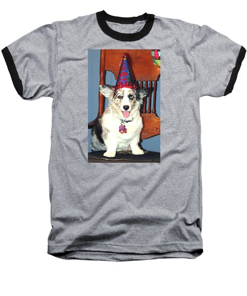 Party Time Dog Baseball T-Shirt by Cathy Donohoue