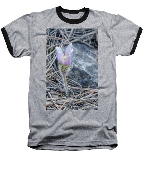 Pasque On The Rocks Baseball T-Shirt