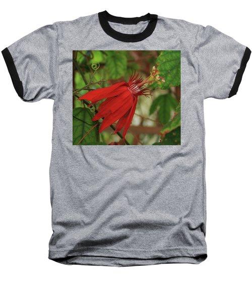 Passion Baseball T-Shirt by Marna Edwards Flavell