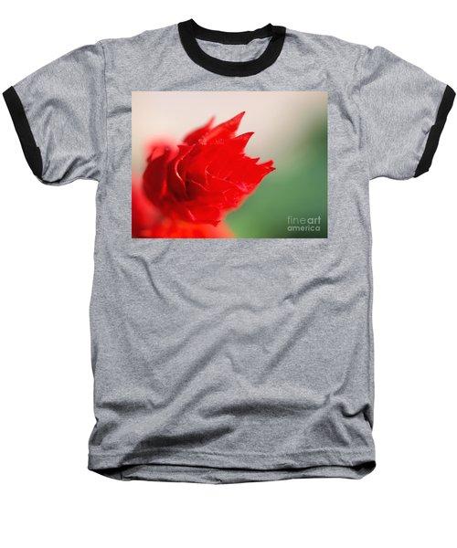 Passion  Baseball T-Shirt by Susan Dimitrakopoulos