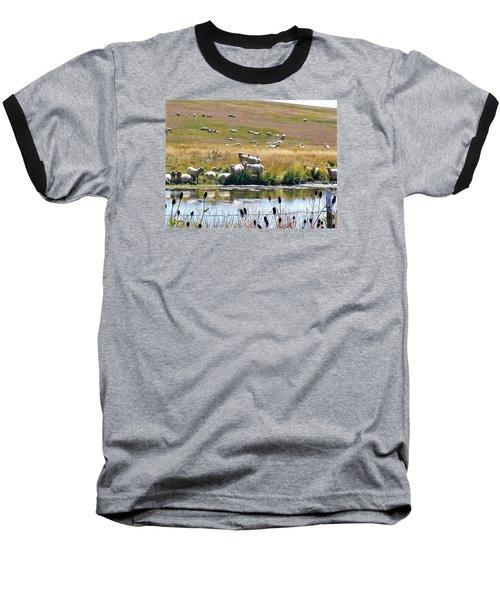 Pastoral Sheep By Pond Baseball T-Shirt