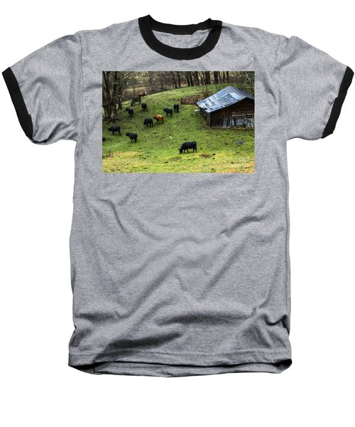 Pasture Field And Cattle Baseball T-Shirt