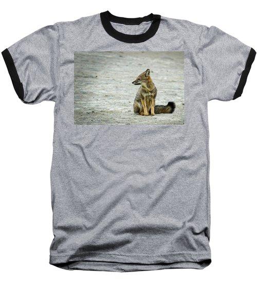 Patagonia Fox - Argentina Baseball T-Shirt