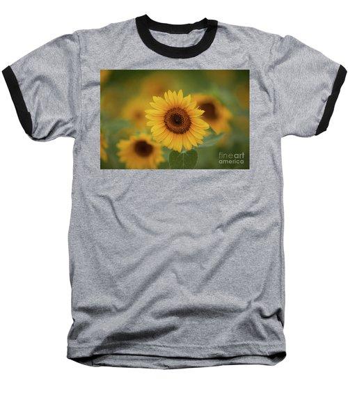 Patch Of Sunflowers Baseball T-Shirt