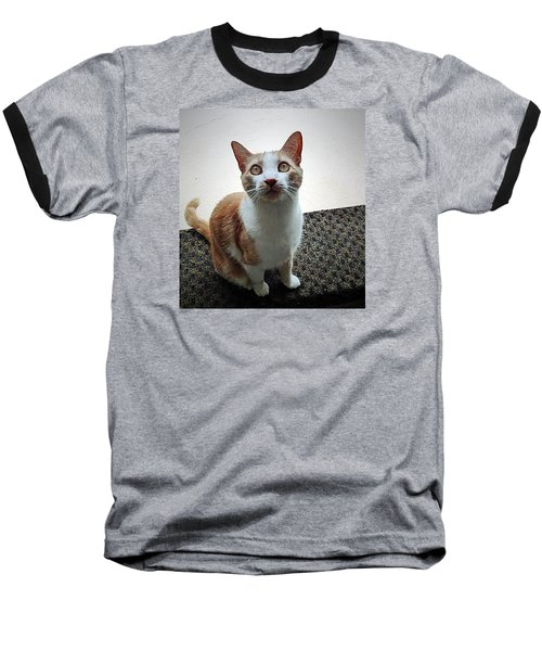 Patch Wants To Play Baseball T-Shirt