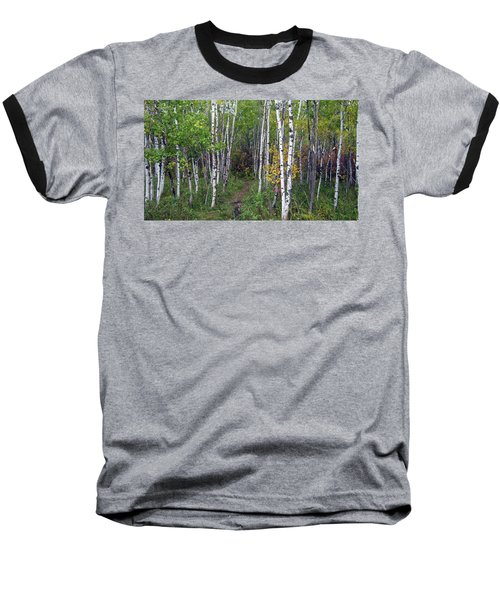 Path In The Woods 5 Baseball T-Shirt
