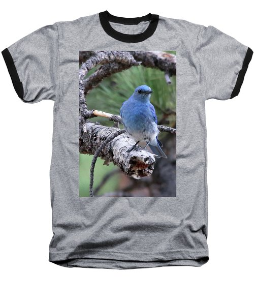 Paying Attention Baseball T-Shirt