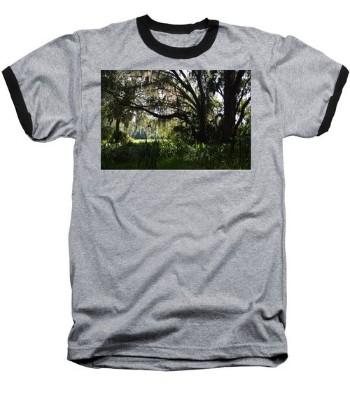 Paynes Prairie Border Baseball T-Shirt