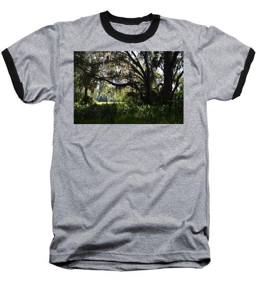 Paynes Prairie Border Baseball T-Shirt