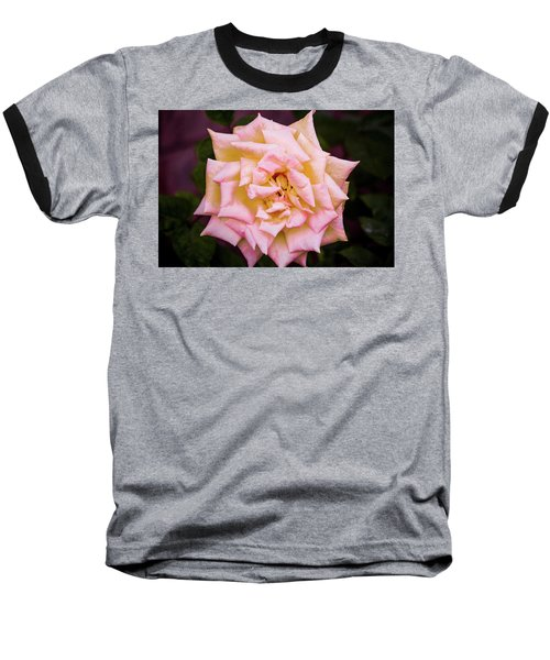 Baseball T-Shirt featuring the photograph Peace Rose by Donna G Smith