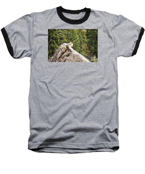 Baseball T-Shirt featuring the photograph Peaceful Enjoyment by Janie Johnson