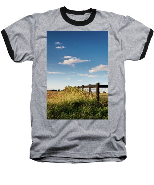 Peaceful Grazing Baseball T-Shirt by David Sutton