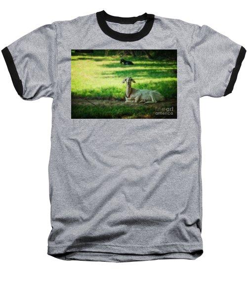 Peaceful Pasture Baseball T-Shirt