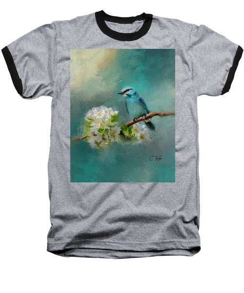 Peaceful Symphony  Baseball T-Shirt by Colleen Taylor