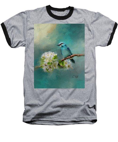 Peaceful Symphony  Baseball T-Shirt