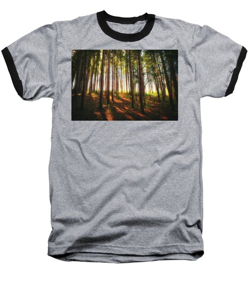 Peaceful Wisconsin Forest 2 - Spring At Retzer Nature Center Baseball T-Shirt by Jennifer Rondinelli Reilly - Fine Art Photography