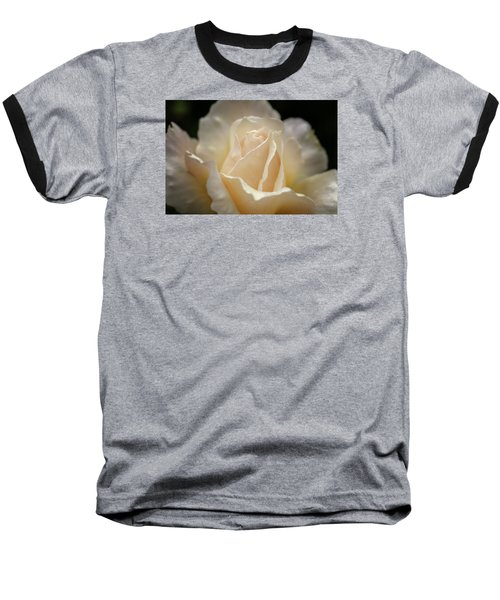 Peach Rose Baseball T-Shirt by Mary Angelini