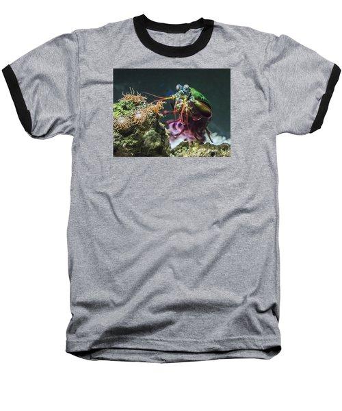 Peacock Mantis Shrimp Profile Baseball T-Shirt