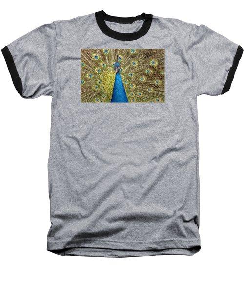 Peacock Splendor Baseball T-Shirt