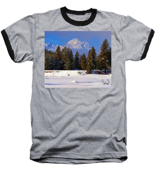 Peaking Through Baseball T-Shirt by Greg Norrell