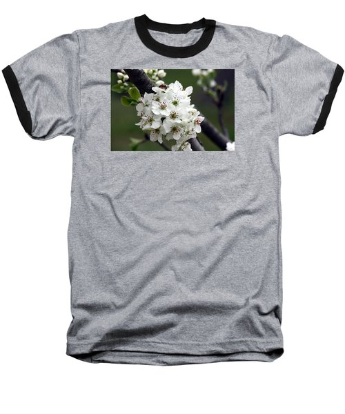 Baseball T-Shirt featuring the photograph Pear Blossoms In Spring by Sheila Brown