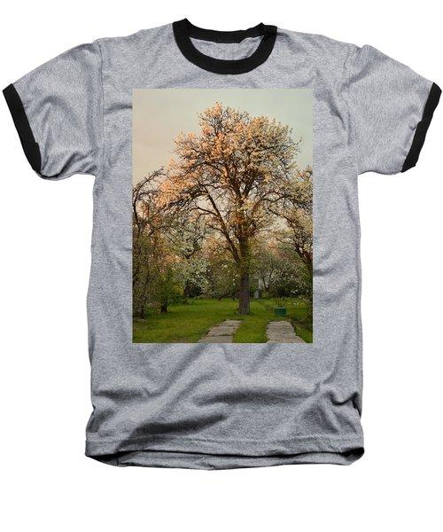Pear Spring Sunrise Baseball T-Shirt by Henryk Gorecki