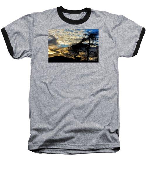 Pebbles Beach Pine Tree Baseball T-Shirt by Elaine Hunter
