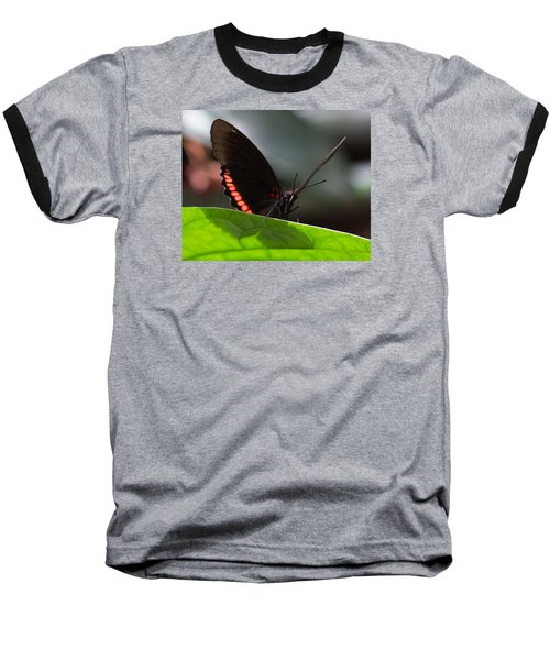 Peek-a-boo 8x10 Baseball T-Shirt