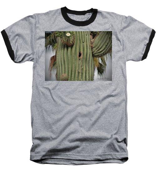 Peek-a-boo Cactus Wren Baseball T-Shirt