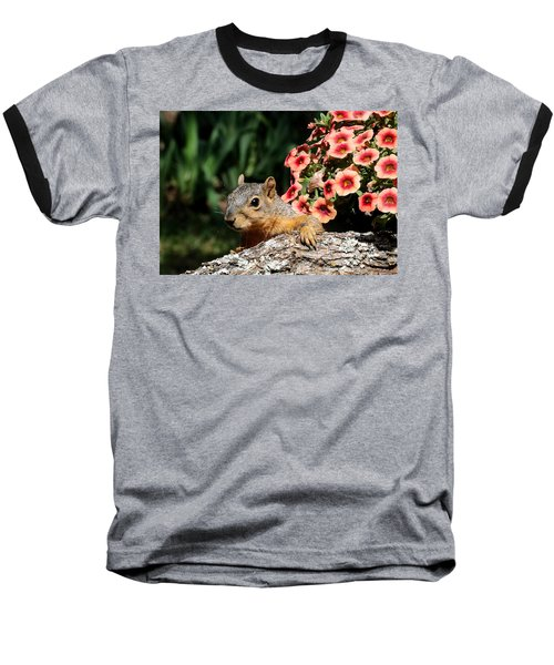 Peek-a-boo Squirrel Baseball T-Shirt