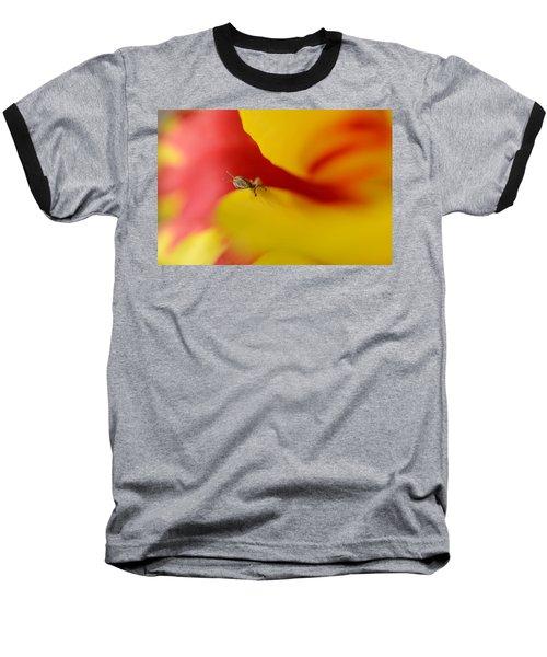 Peeking Baseball T-Shirt by Janet Rockburn