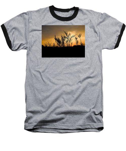 Peeking Out Baseball T-Shirt by Tim Good