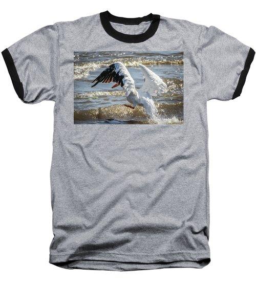 Pelican Jump Baseball T-Shirt