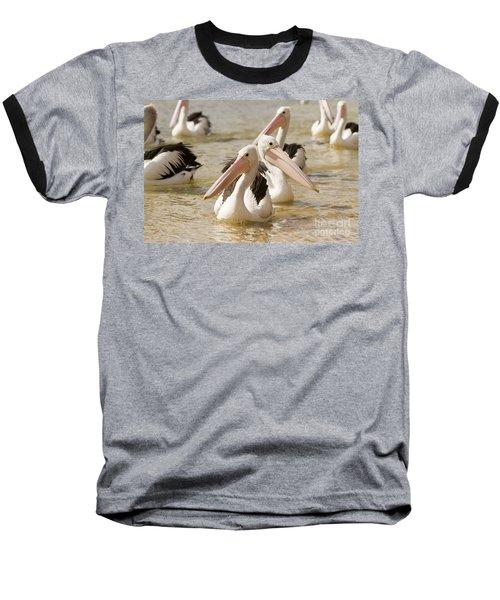 Pelicans Baseball T-Shirt by Craig Dingle