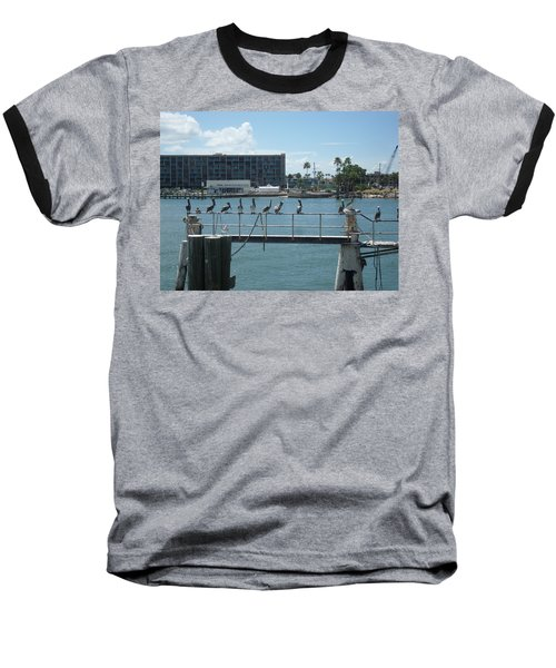 Pelicans In A Row Baseball T-Shirt by Val Oconnor