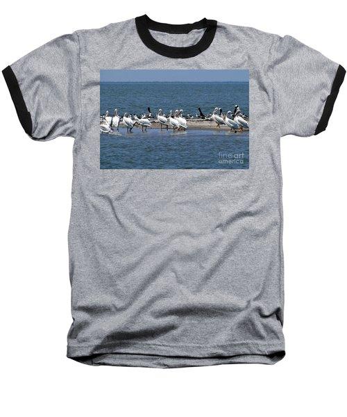 Pelicans Island Baseball T-Shirt by Cindy Croal