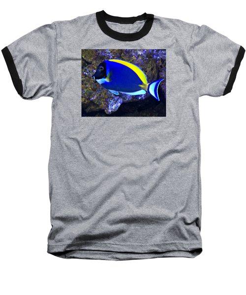Blue Tang Fish  Baseball T-Shirt