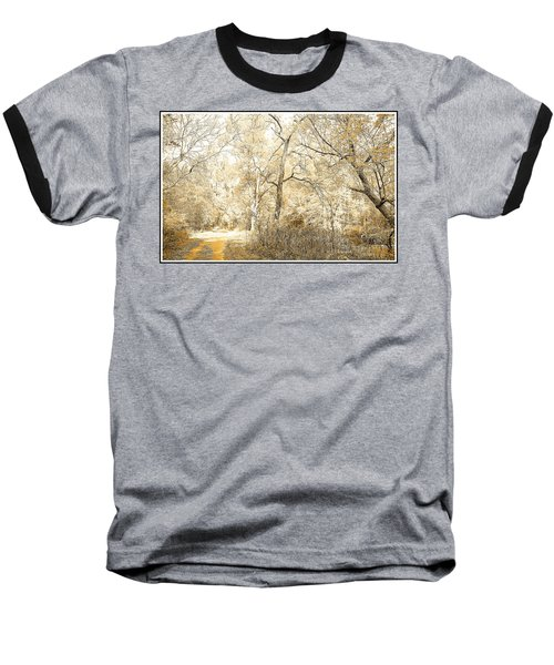 Pennsylvania Autumn Woods Baseball T-Shirt by A Gurmankin