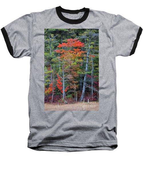 Pennsylvania Laurel Highlands Autumn Baseball T-Shirt by John Stephens