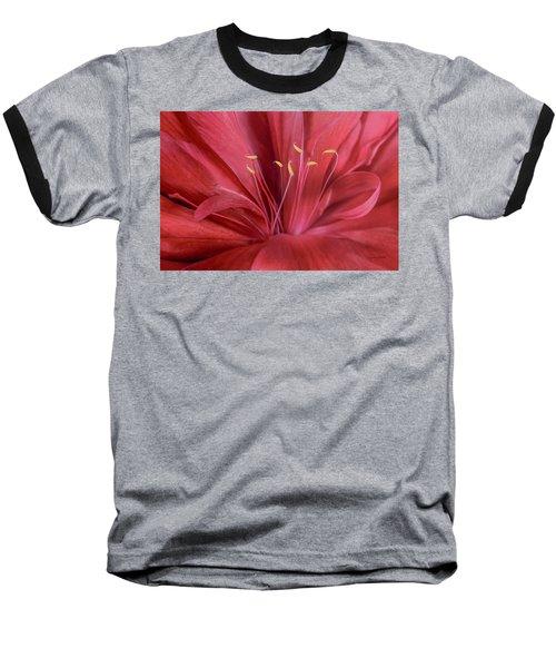 Peonia Insight Baseball T-Shirt