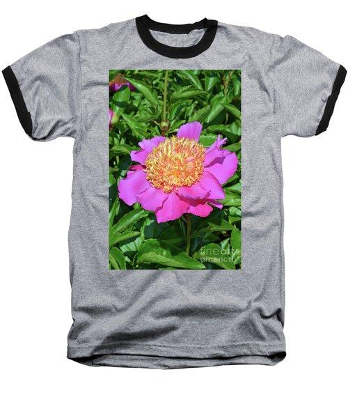 Peony 10 Baseball T-Shirt by Eva Kaufman
