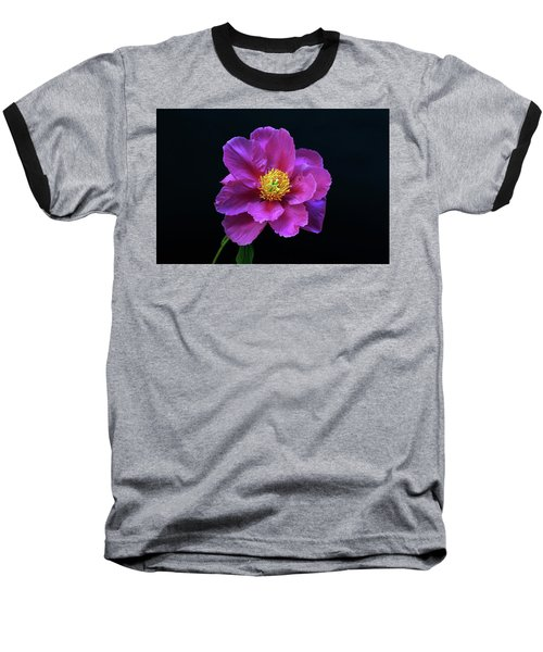 Peony - Beautiful Flowers And Decorative Foliage On The Right Is One Of The First Places Among The G Baseball T-Shirt