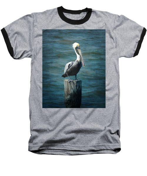 Perched Pelican Baseball T-Shirt by Carla Parris