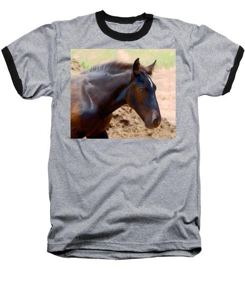 Percheron Colt - Digitalart Baseball T-Shirt