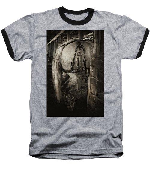 Percheron Draft Horse Baseball T-Shirt by Theresa Tahara